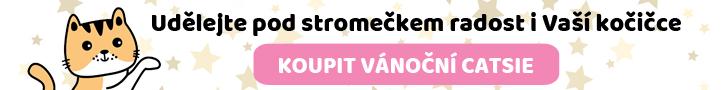 kosik vanocni catsie