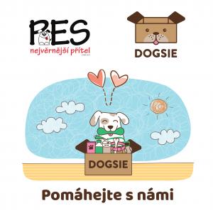 Spolupráce Dogsie a nadace Pes nejvěrnější přítel