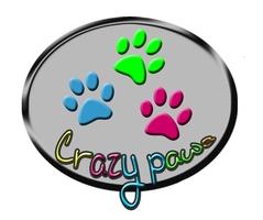 crazy paws logo