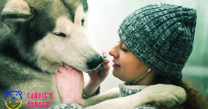 žena dává psovi pamlsek