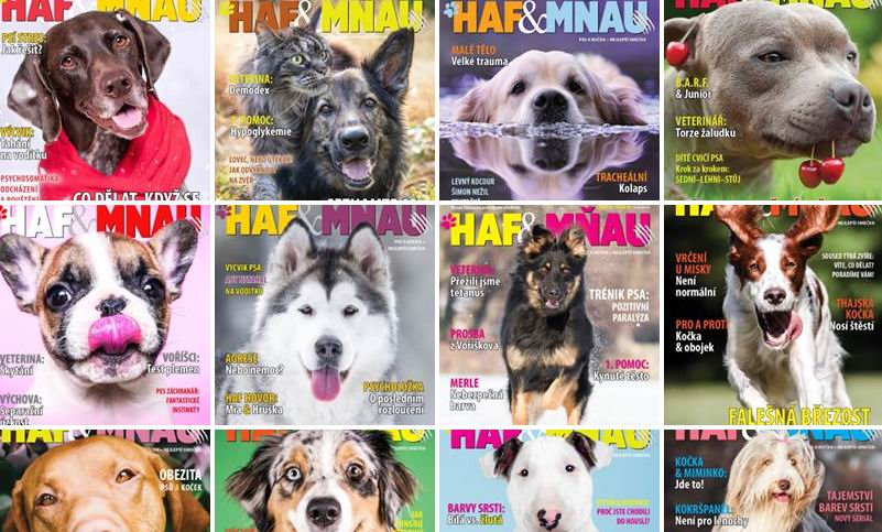 Titulky časopisu Haf & Mňau